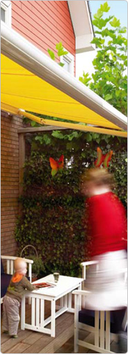 Awnings in Surrey